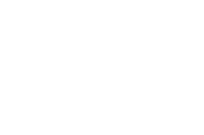 OFFICIAL SELECTION - Art Color Digital Cinema International Film Festival AC DC IFF - 2018.png