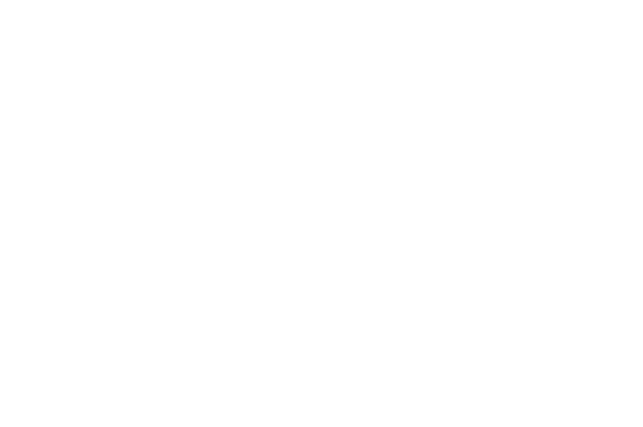 OFFICIAL SELECTION - Oaxaca FilmFest - 2017.png